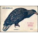 El águila. Su naturaleza, costumbres y modo de cazarlo