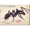 La hormiga. Su naturaleza, costumbres