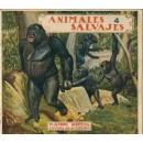 Animales salvajes 4
