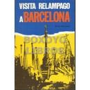 Visita relámpago a Barcelona