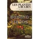 Les plantes a bulbes